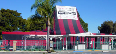 Termite Fumigation of The New Huntington Beach Farmer's Market!