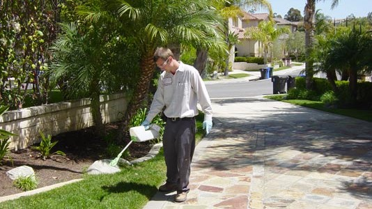 Pest Control Orange County 1