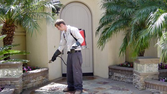 Pest Control Orange County 3