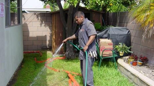 Termite Fumigation Orange County 2
