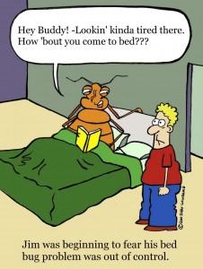 bedbug_cartoon.34105324_std