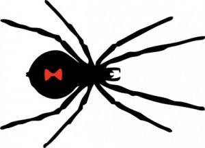 black_widow_spider_clip_art_6115
