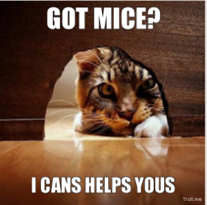 got-mice-i-cans-helps-yous-thumb