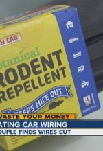 Lawsuit: Rodents Love Eating Honda's Wiring