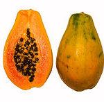 Mexican Papaya Recall