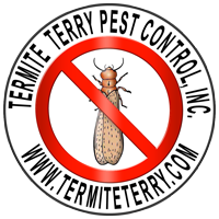 Termite Pest Control Orange County, Costa Mesa, Newport Beach, Huntington Beach, Irvine, Fountain Valley