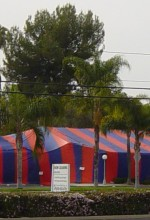 Another Rave Review! Fumigation of a Shopping Center in Yorba Linda